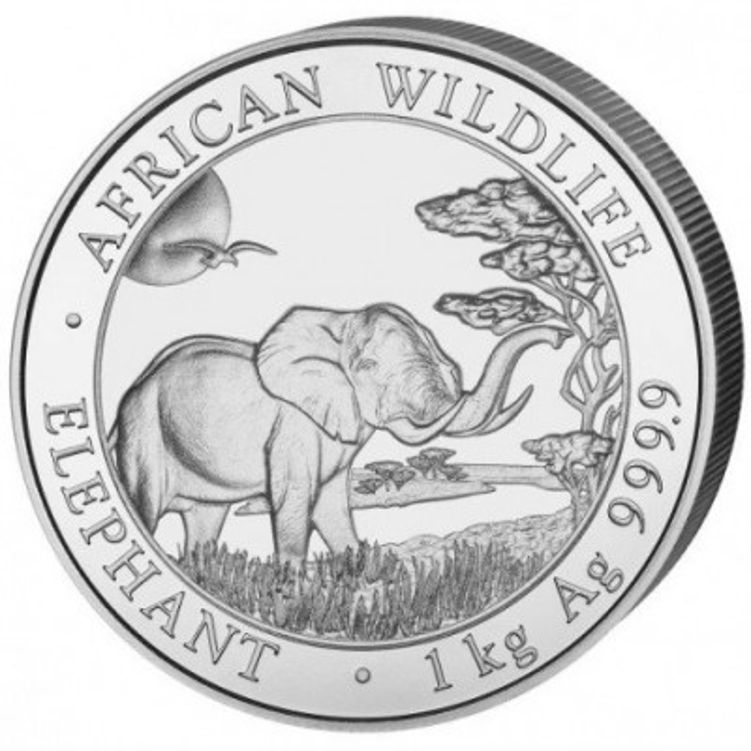1 Kilogram zilveren munt Somalische Olifant 2019