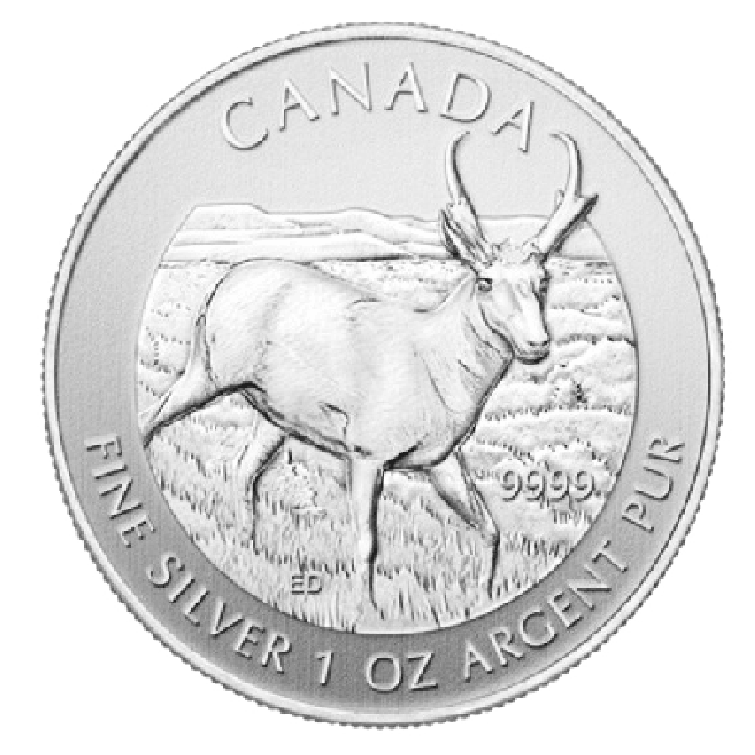 Zilveren maple leaf antilope munt 2013
