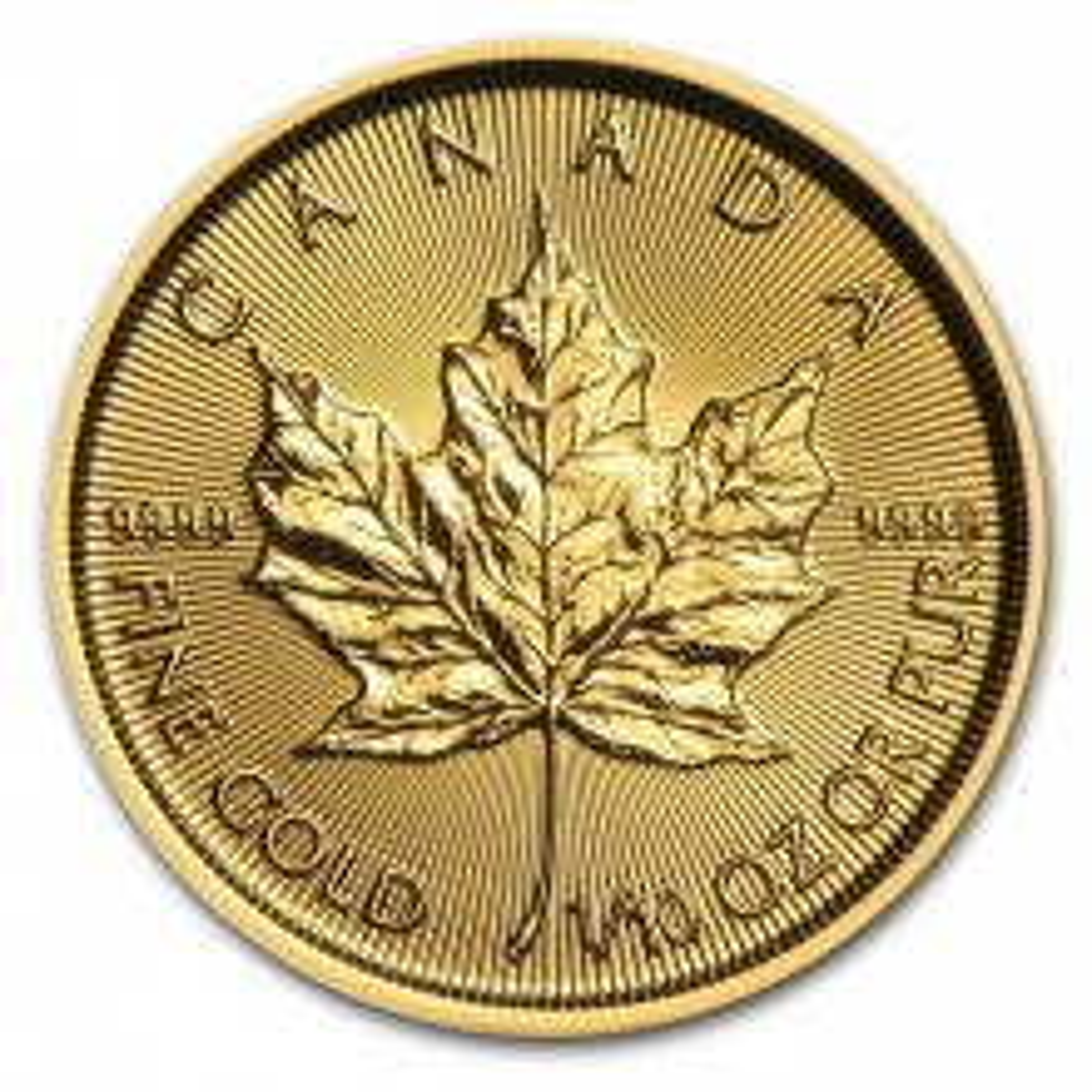 Gouden 1/10 troy ounce Maple Leaf munt Hologram