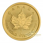 1/2 troy ounce gouden Maple Leaf munt 2019