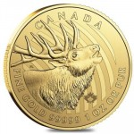 Call of the Wild 2017 Elk - 1 troy ounce gouden munt