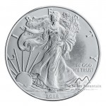 Silver Eagle munt 2019 - 1 troy ounce