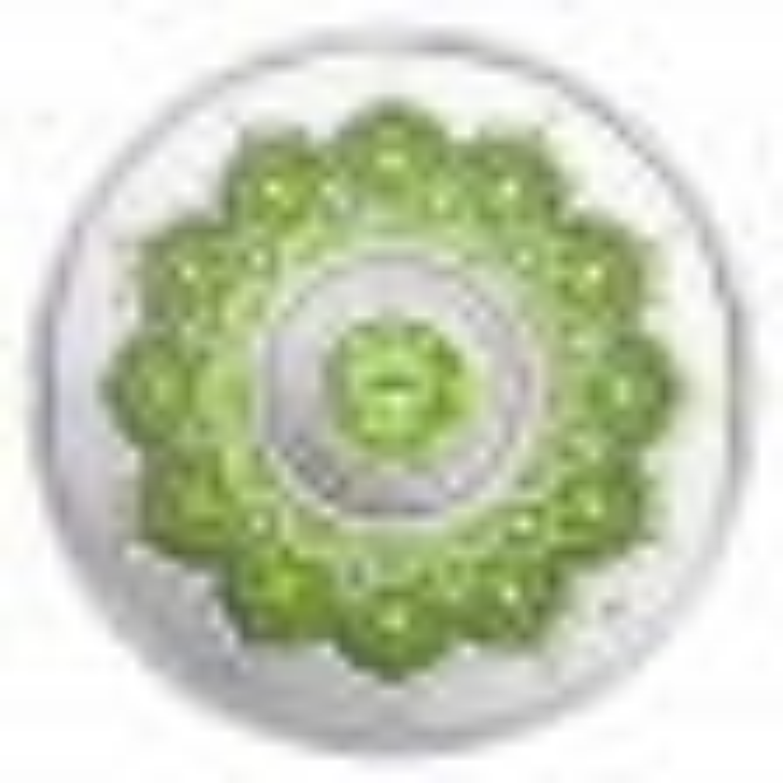 Zilveren munt Augustus Birthstone Swarovski