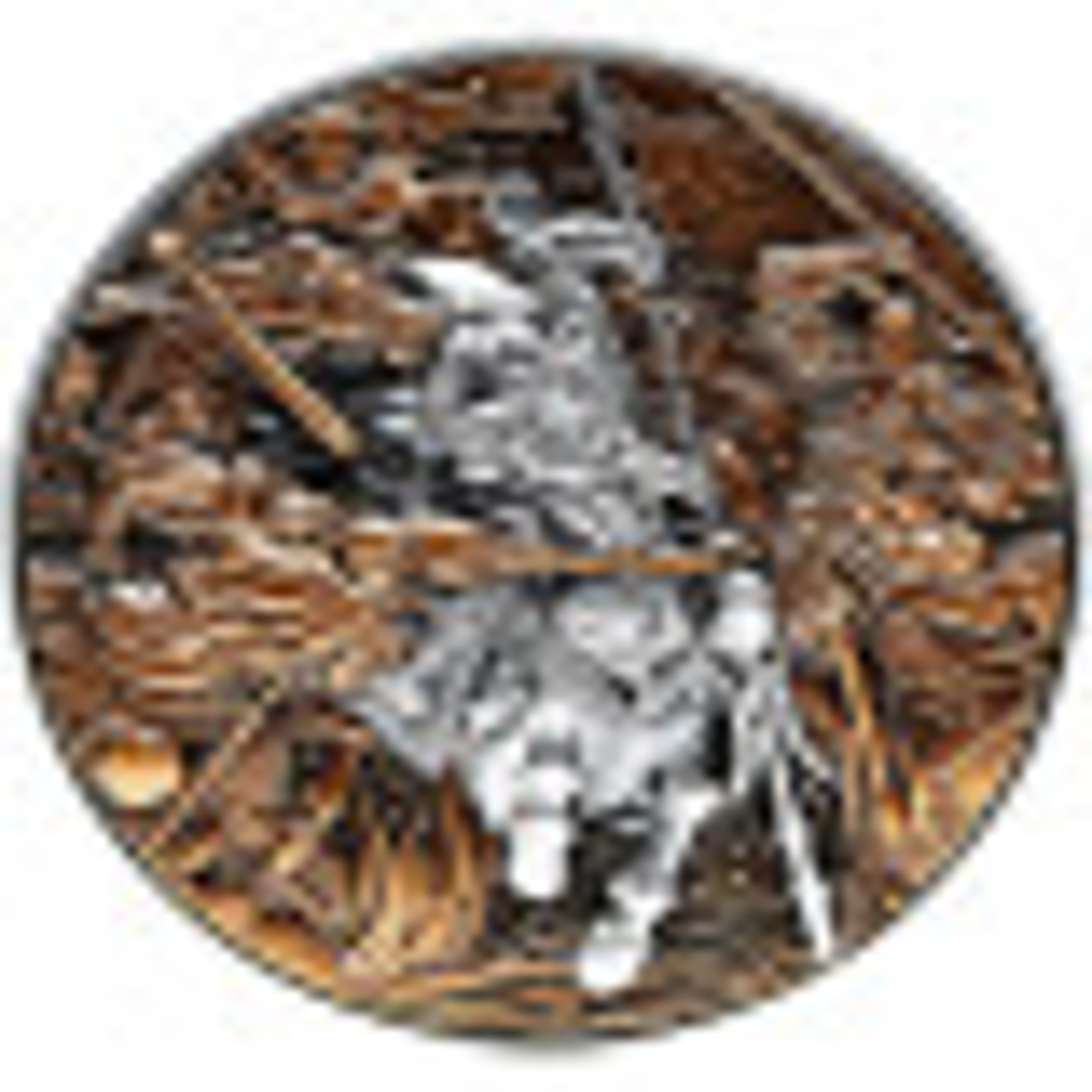 2 troy ounce zilveren munt Lü Bü strijd 3 helden 2021