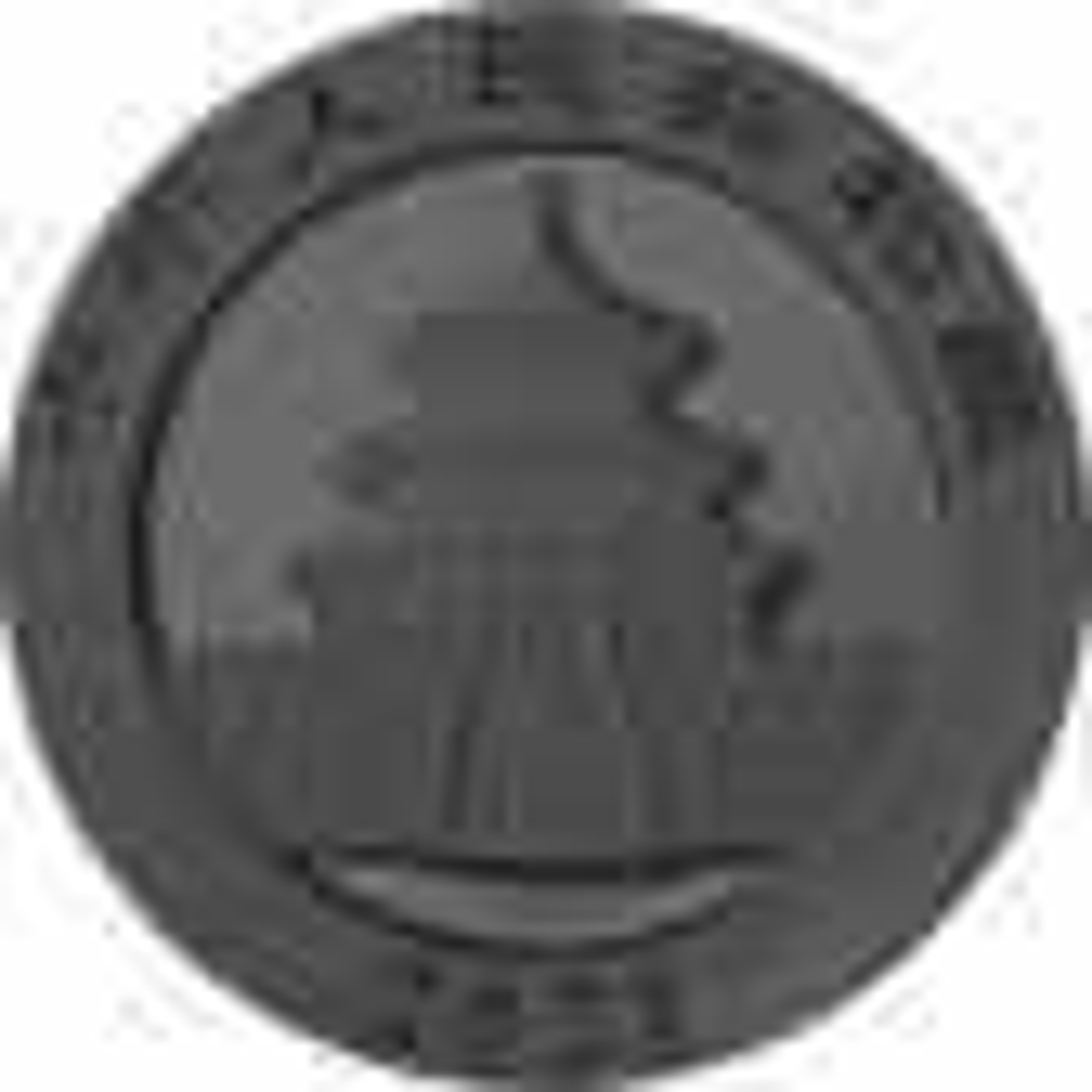 30 gram zilveren munt gouden holo serie Panda 2021 - achterkant