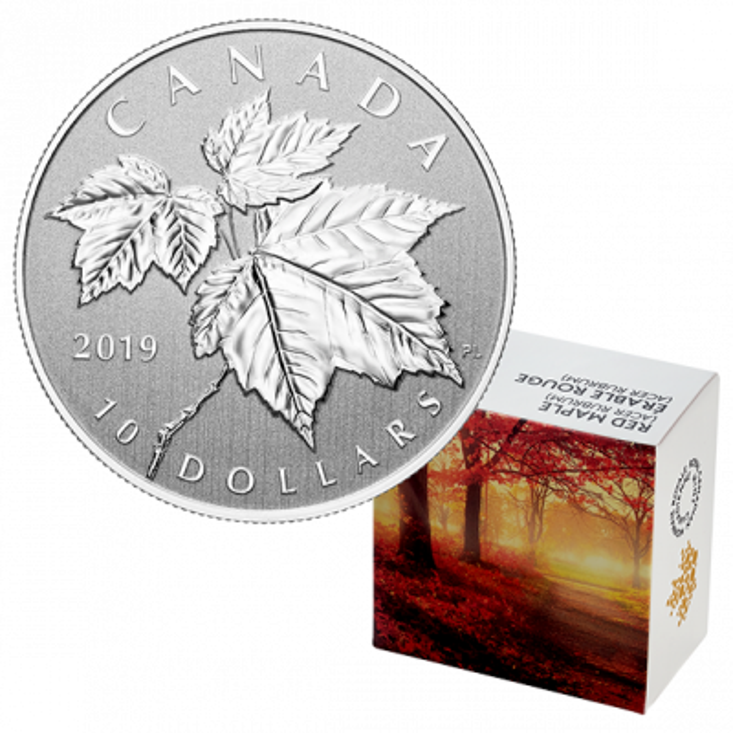 1/2 Troy ounce silver coin Maple Leaf 2019