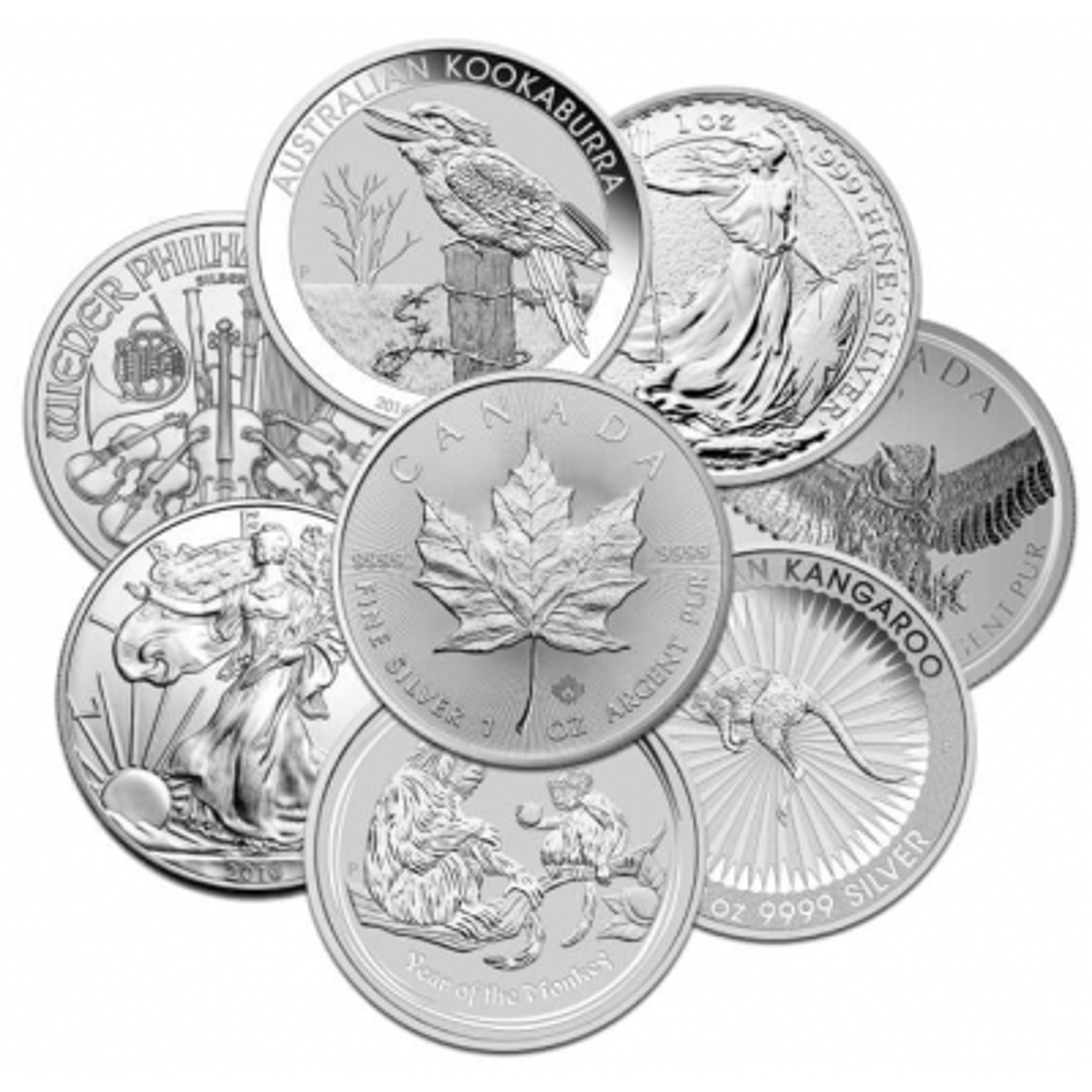25 Troy ounce various circulated silver collector coins