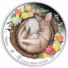 1/2 troy ounce silver coin kangaroo - Dreaming down under 2021 Proof