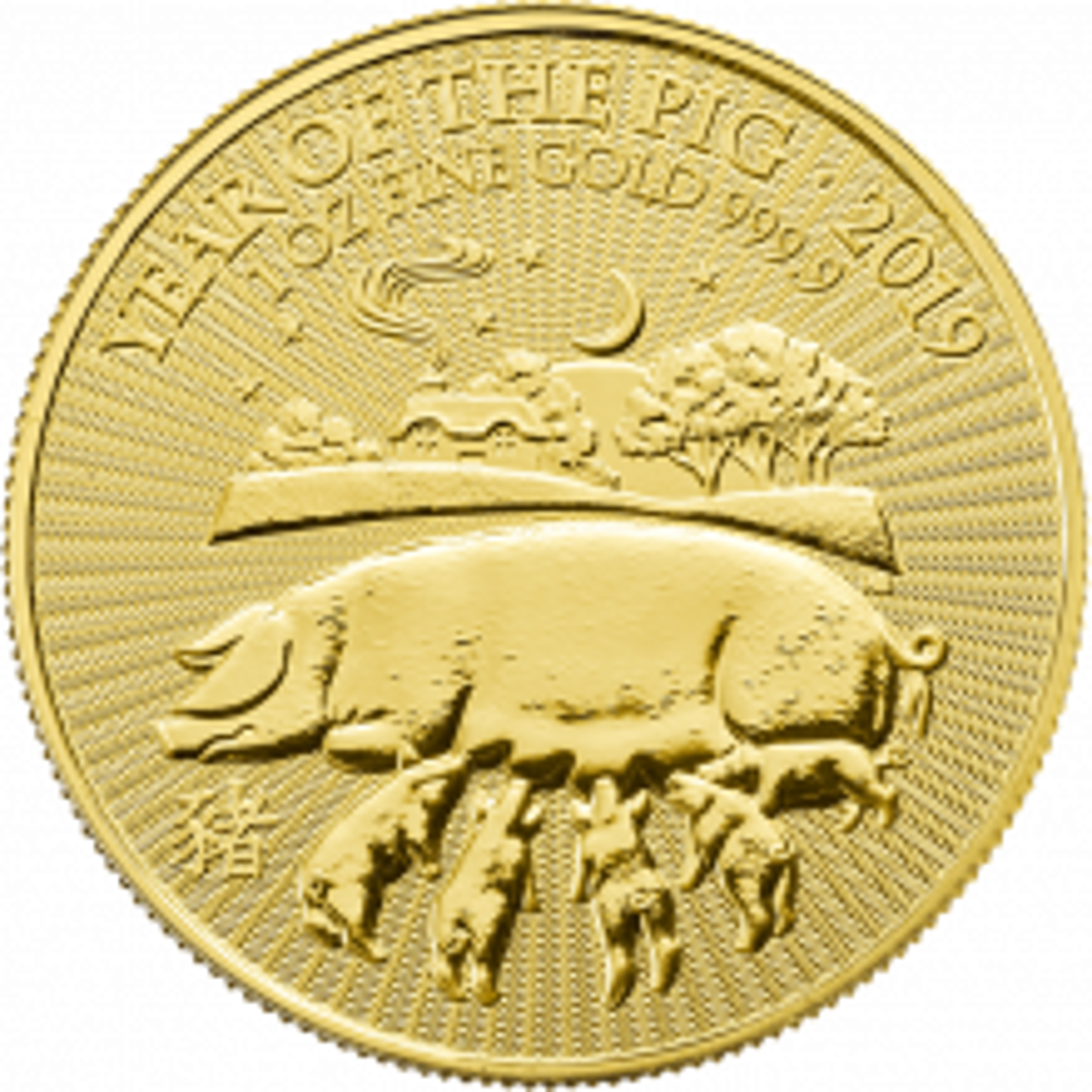 1 Troy ounce gouden munt UK Lunar 2019
