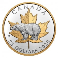 Silver coin polar bear 2020 proof