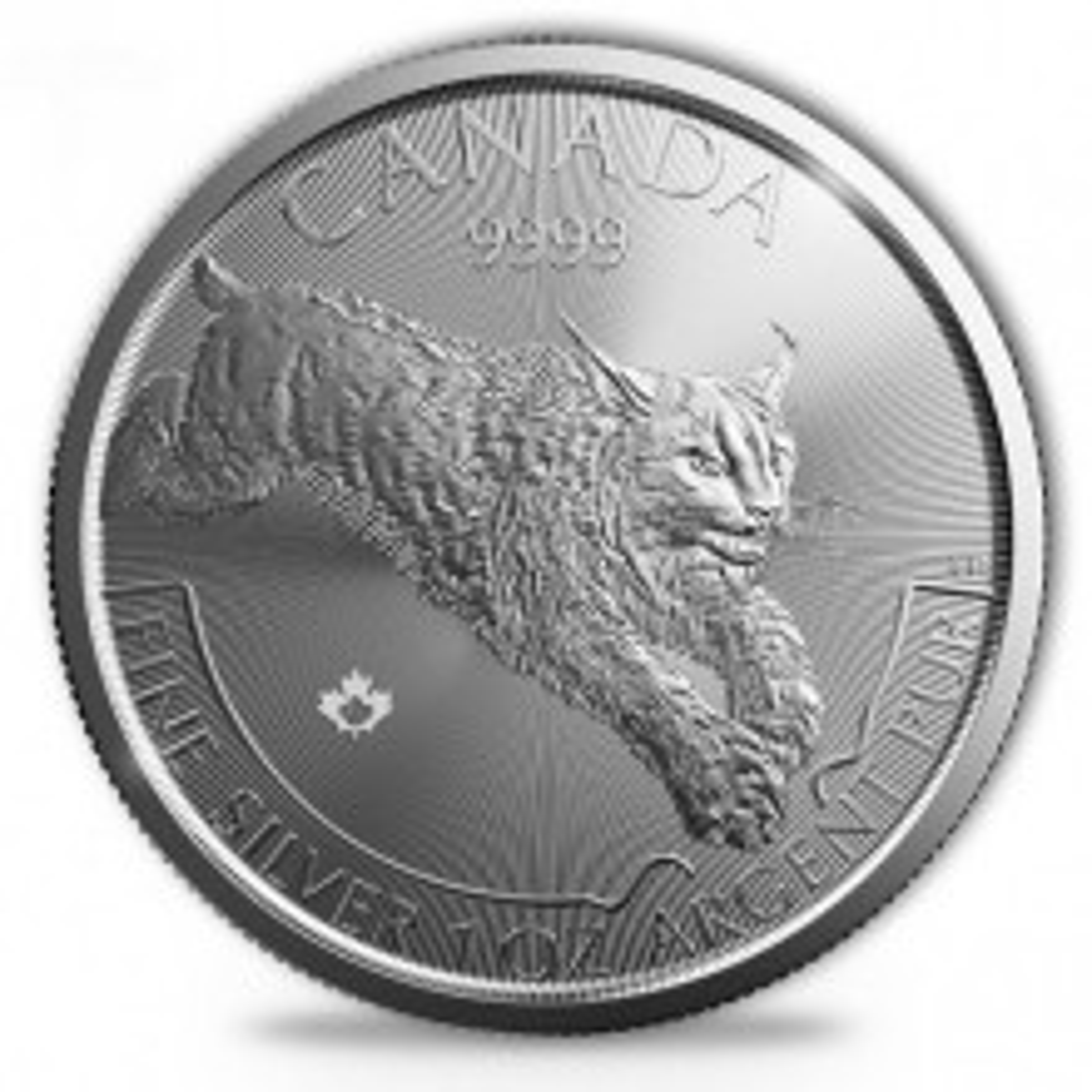 1 troy ounce silver Lynx - Predator series - 2017