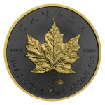 1 Troy ounce silver coin Golden Ring - Maple Leaf 2019